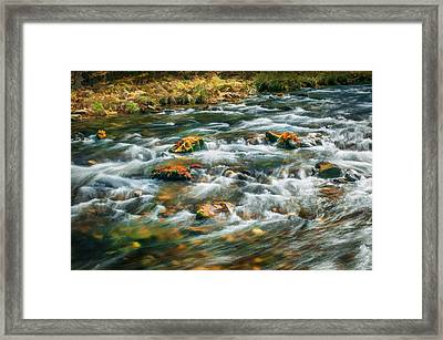 Stream Fall Colors Great Smoky Mountains Painted  Framed Print by Rich Franco
