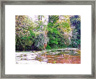 Serene Stream High Wycombe Framed Print by Marilyn Holkham