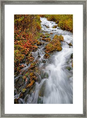 Stream In Autumn Framed Print by Utah Images
