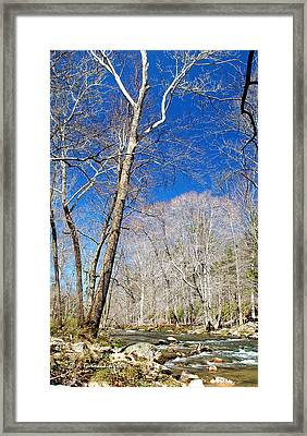 Framed Print featuring the photograph Stream In Spring Montgomery County Pennsylvania by A Gurmankin