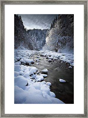 Stream To Winter Framed Print by Dominique Dubied