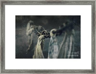 Strength Framed Print by Sharon Mau