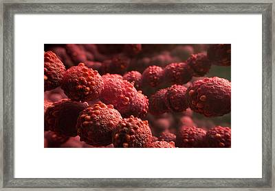 Streptococcus Bacteria Framed Print by Thierry Berrod, Mona Lisa Production