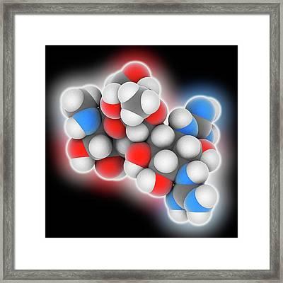 Streptomycin Drug Molecule Framed Print by Laguna Design