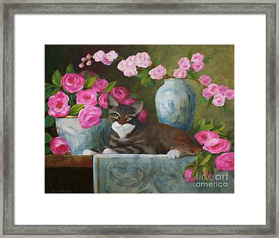 Striped Kitten With Pink Roses Framed Print by Sue Cervenka