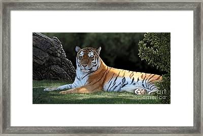 Striped Light Framed Print by Laura Klassen