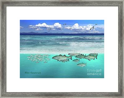 Stripers In The Surf Framed Print by Alex Suescun