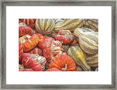 Stripes Framed Print by Caitlyn  Grasso