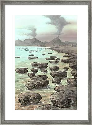 Stromatolites Framed Print by Richard Bizley