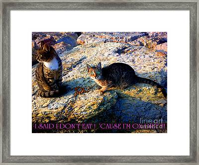 Strong-willed Cat Framed Print by Hanza Turgul