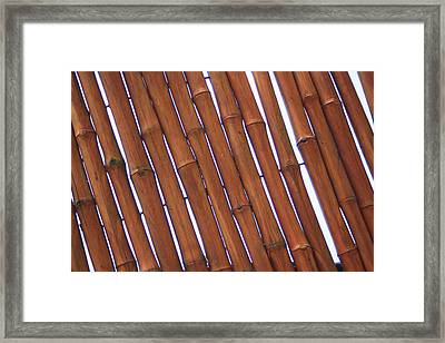 Stronger Together Framed Print by Earnie Whittenberg