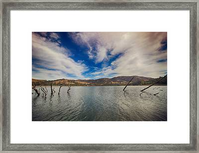 Struggle Framed Print by Laurie Search