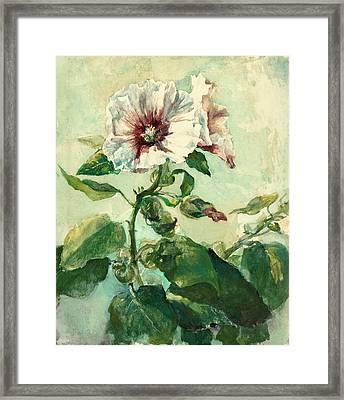 Study Of Pink Hollyhocks In Sunlight From Nature Framed Print by John LaFarge