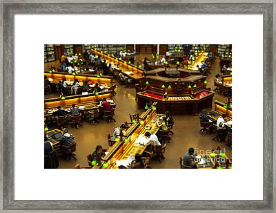 Study Session Framed Print by Andrew Paranavitana