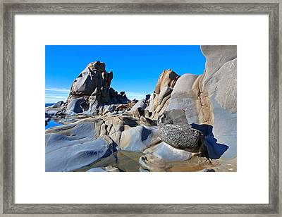 Stump Beach Framed Print by Daniel Furon