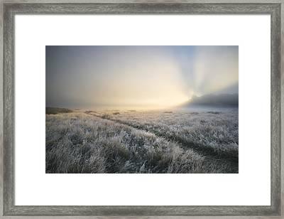 Stunning Sun Beams Light Up Through Thick Fog Of Autumn Fall Fro Framed Print by Matthew Gibson