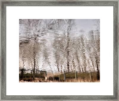 Subdued Reflection Framed Print by Steven Milner