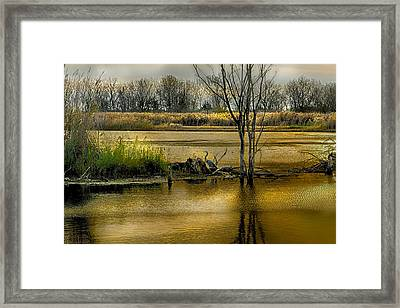 Sublime Banner Part 3 Framed Print by Kimberleigh Ladd