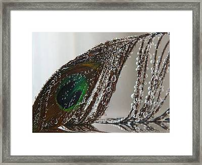 Submerged Framed Print by Anna Villarreal Garbis