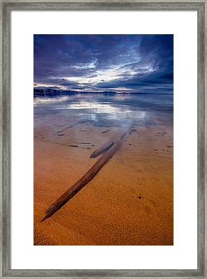 Submerged Log Framed Print by Mike Lee