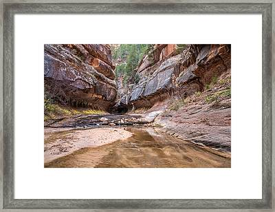 Subway Entrance In Zion National Park Backcountry Framed Print by Pierre Leclerc Photography