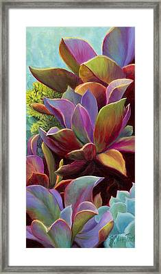 Succulent Jewels Framed Print by Sandi Whetzel