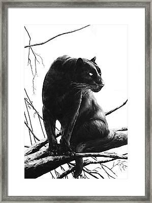 Suddenly Framed Print by DiDi Higginbotham