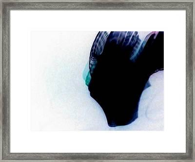 Sugar Framed Print by Iamthebetty Tbone