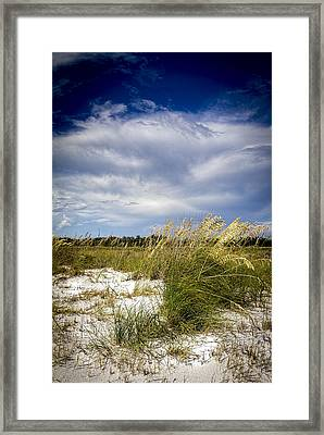Sugar Sand And Sea Oats Bw Framed Print by Marvin Spates