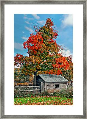 Sugar Shack Framed Print by Steve Harrington