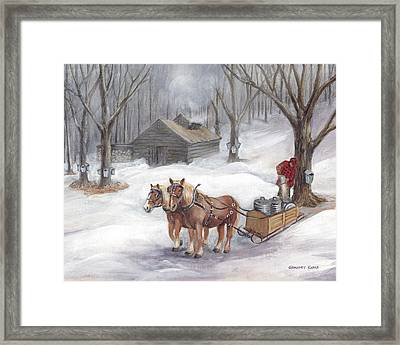 Sugaring Time Again Framed Print by Gregory Karas