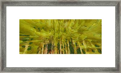 Summer Abstract Framed Print by Dan Sproul