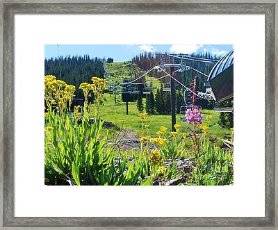 Summer At Wolf Creek Framed Print by William Wyckoff