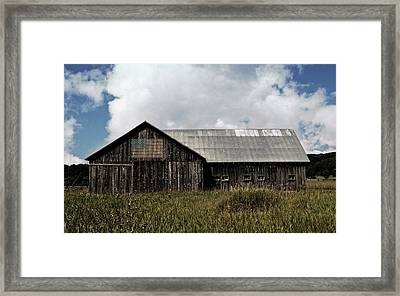 Summer Barn In The Country  Framed Print by Michelle Calkins