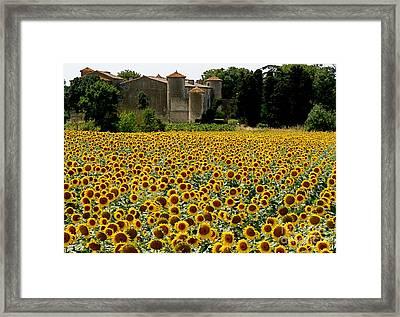 Summer Bliss Framed Print by France  Art
