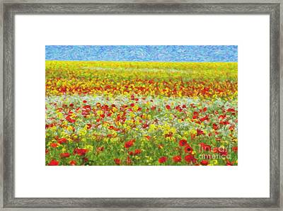 Summer Breeze Framed Print by Tim Gainey