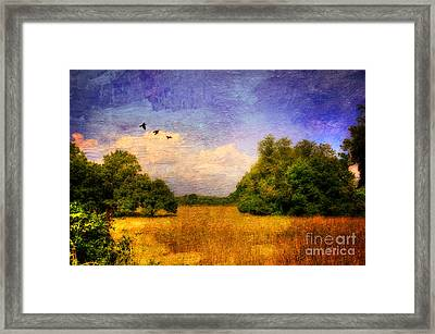 Summer Country Landscape Framed Print by Lois Bryan