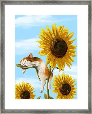 Summer Dream Framed Print by Veronica Minozzi