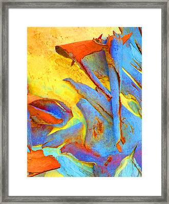 Summer Eucalypt Abstract 29 Framed Print by Margaret Saheed