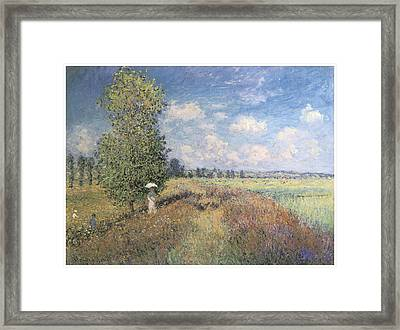 Summer Field Of Poppies Framed Print by Claude Monet