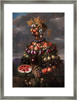 Summer Framed Print by Giovanni Stanchi