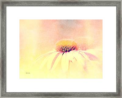 Summer In A Day Framed Print by Bob Orsillo