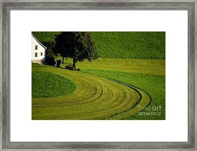Summer In Switzerland Framed Print by Susanne Van Hulst