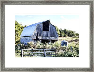 Summer Morning Framed Print by Cricket Hackmann