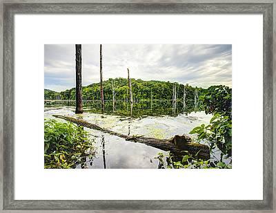 Summer Morning On Monksville Reservoir 1 Framed Print by Gary Heller
