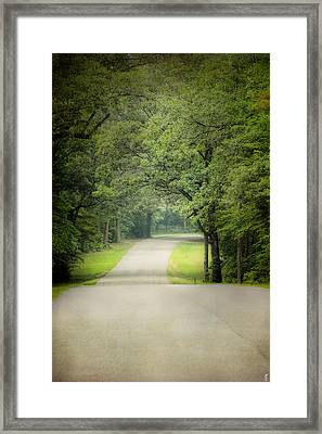Summer Morning Stroll Framed Print by Jai Johnson