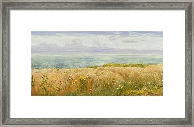 Summer On The Cliffs Framed Print by John Brett