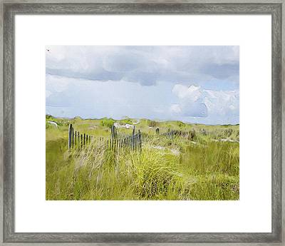 Summer On The Dunes Framed Print by Dave Sandt