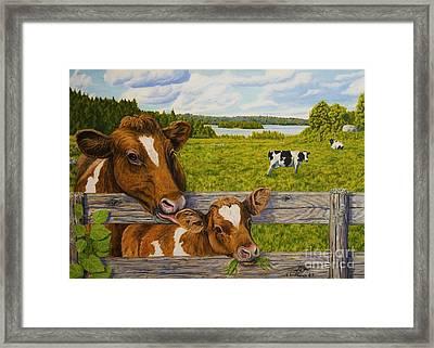 Summer Pasture Framed Print by Veikko Suikkanen
