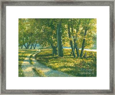 Summer Place Framed Print by Michael Swanson